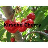 Kirsche Cherry
