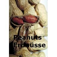 Peanuts-Erdnuß-Erdnüsse