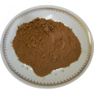 Ginseng Extract  10 : 1 Pulver