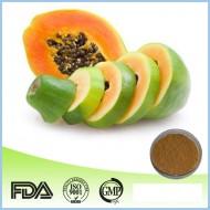 Papaya Extract Pulver Carica papaya reines Pulver