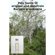 Palo Santo Öl (reines Öl) keine Verdünnung Bursera graveolens naturrein