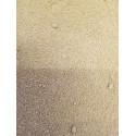 Koriander Pulver - reines Korianderpulver aus Polen