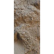 Graviola (annona muricata) Stachelannone Pulver 160 Gramm Dose