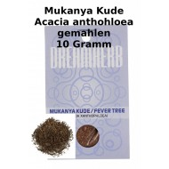 Mukanya Kude Acacia Xanthophloea