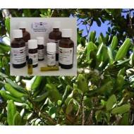 Bayöl Westindischer Lorbeer 100% ätherisches Öl Mäc Spice