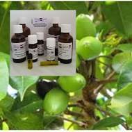 Elemiöl 100% ätherisches Öle von Mäc Spice