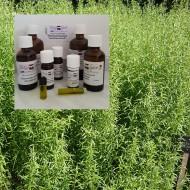 Estragonöl 100% ätherisches  Öle von Mäc Spice