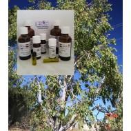 """Eukalyptusöl naturrein - 100% ätherische Öle """"Mäc Spice"""""""
