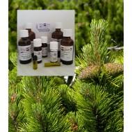 Kiefernadelöl pinus sylvestris 100% naturreines Öl von Mäc Spice