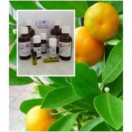 Mandarinenöl 100% ätherische Öle von MäcSpice
