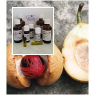 """Macisblütenöl Muskatnussblütenöl 100% ätherisches Öle von """"Mäc Spice"""""""