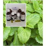 Melisse indicum 100% naturreine ätherische Öle von MäcSpice