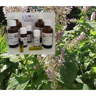 Muskateller Salbeiöl 100% naturreine ätherische Öle von Mäc Spice