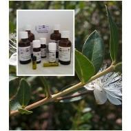Myrtenöl Myrte Öl 100% naturreines ätherisches Öl von Mäc Spice