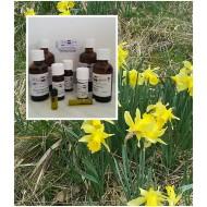 Narzissenöl Narzisse 100% naturrein ätherisches Öl Mäc Spice