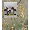 Nelkenstengelöl Stengel 100% naturreines ätherisches Öle von MäcSpice