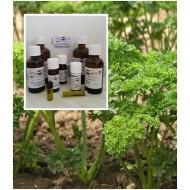 Petersilienöl 100% naturreines ätherisches Öl von Mäc Spice