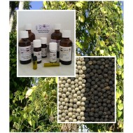 Pfefferöl schwarz 100% ätherisches Öl von Mäc Spice