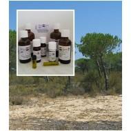 Pinienöl (Schwarzkiefer) 100% ätherischesÖle von Mäc Spice