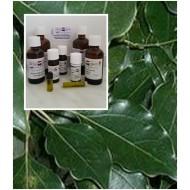 Ravensara Öl Ravensaraöl 100% ätherisches Öle Mäc Spice