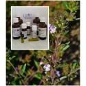 Bohnenkrautöl 100% naturreines ätherisches Öl von Mäc Spice