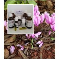 Cyclamenöl Alpenveilchen-Absolute 100% naturrein ätherisches Öl Mäc Spice