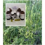 """Rosalinaöl  Sumpfteebaumöl 100% ätherische Öle von """"Mäc Spice"""""""