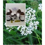 Schafsgarbenöl / Yarrowöl 100% naturreines ätherisches Öl von Mäc Spice