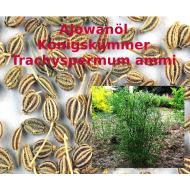 Ajowanöl Königskümmelöl naturrein Trachyspermum ammi