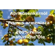 "Aprikosenkernöl raffiniert Prunus armeniaca ""Mäc Spice"""