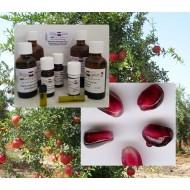 Ganatapfelkernöl Bio Punica granatum Hautpflege kbA