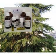 Zedernholzöl Himalaya cedrus deodora 100% naturreines Öle Mäc Spice