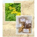 Alant Wurzel gemahlen-Inula helenium- Naturprodukt von Mäc Spice