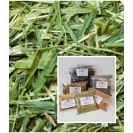 Bio Grüner Hafer  Grünhafer Tee geschnitten kbA Avena sativa 100% Natur