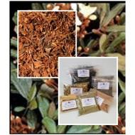 Catuaba Rinde Catuabatee  geschnitten beste Qualität Tee vom Mäc Spice