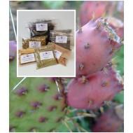 Feigenkaktus gemahlen  1A Opuntia ficus-indica Mäc Spice Natur