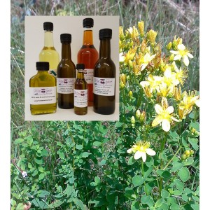 Johanniskrautöl Basis Olivenöl 1000 ml - das besondere Öl von mac-spice Olivenöl