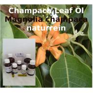 """Champaca Öl Magnolia champaca """"Mäc Spice"""" naturrein aus Blättern"""