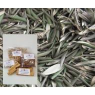 Olivenblätter ganz Olivenblättertee Olea europaea L. beste Natur Mäc Spice