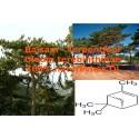 Balsam Terpentin Öl farblos Qualität Mäc Spice Balsamterpentinöl