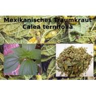 """Traumkraut mexikanisch Calea zacatechichi  100% reine Naturkräuter """"Mäc Spice"""""""