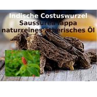 Kostuswurzel Öl - Indische Costuswurzel Saussurea lappa