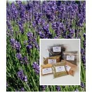 """Lavendelblüten französisch 1 A Qualität Tee oder Duftkissen """"Mäc Spice"""""""
