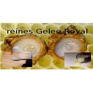 Gelee Royale Weiselfuttersaft beste Imkerqualität in Lichtschutz Glas von Mäc Spice