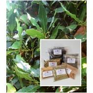 Lorbeerblätter ganz Handverlesen 1A Qualität Gewürz besteNatur Mäc Spice