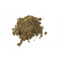 Leonotis leonurus Wild Dagga  Extract 50 fach 1 Gramm