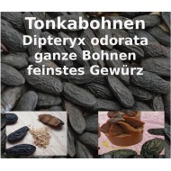 Tonkabohnen ganz Dipteryx odorata Glücksbohnen Wunschbohne Würzen Backen