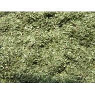 """Spitzwegerich geschnitten Plantago lanceolata reine Natur von """"Mäc Spice"""""""