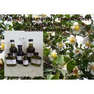 Kamelienöl Teesamensamenöl Camellia oleifera  Hautpflege! Mäc Spice