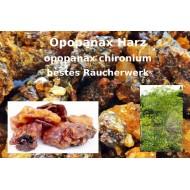 Opopanax  bestes Räucherharz Commiphora holtzia 100% natürlich